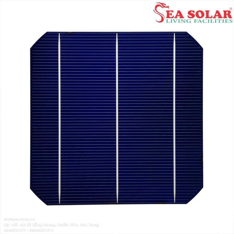 Cấu tạo của pin năng lượng mặt trời: tế bào quang điện (solar cell).